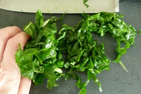 MissFoodFairy's finely slicing spinach
