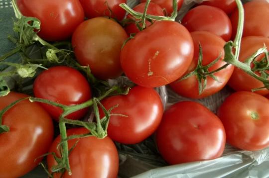 MissFoodFairy's tomatoes IMKAUG2014