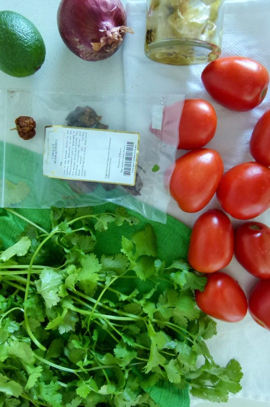 MissFoodFairy's spicy salsa ingredients